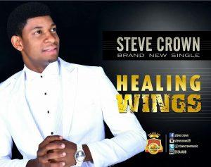 Steve Crown - Healing Wings