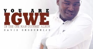 You are Igwe - David Omodunmiju