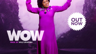 Photo of WOW! Toluwanimee Premieres New Single | @Toluwanimee