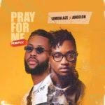 Limoblaze_Pray For Me