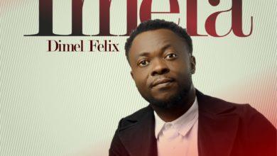 "Photo of Dimel Felix Delivers High Praise with ""IMELA"""